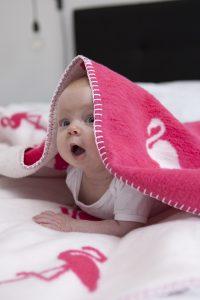 Fuchsia deken babykamer Meyco flamingo